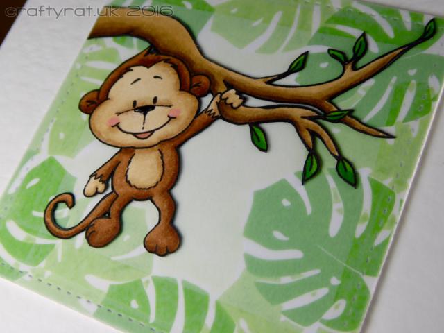 monkey - detail