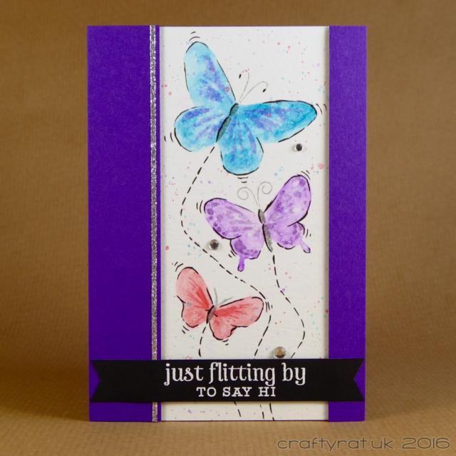 wc butterflies b