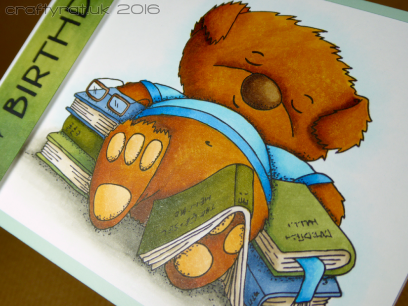 bear and books - detail