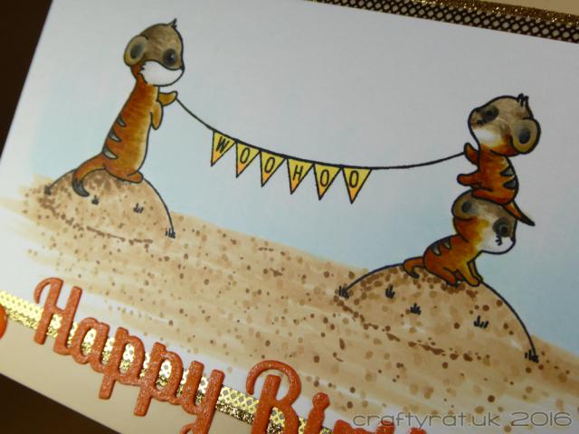meerkats - detail