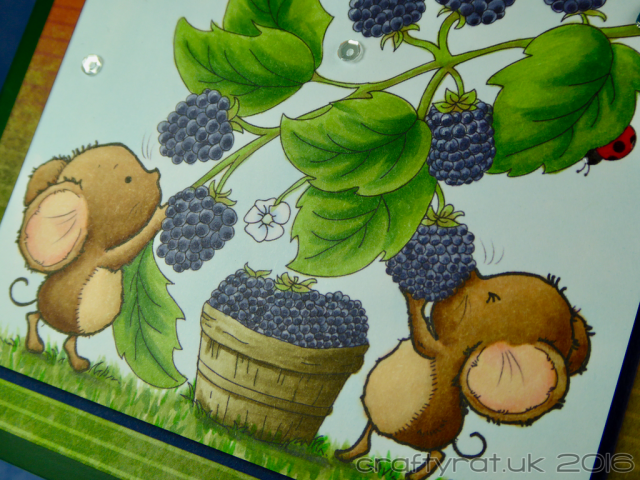 mice-and-blackberries-detail