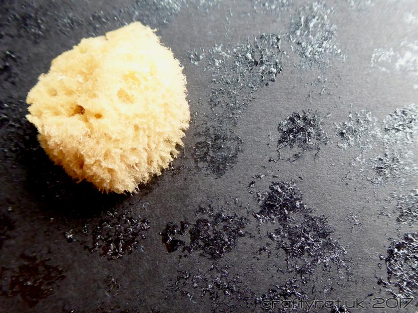 prep-sponge