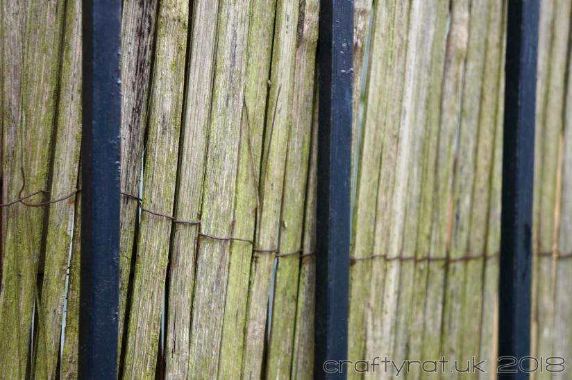 CRX0019 fencing