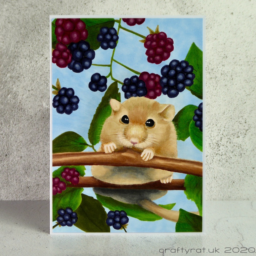 Copic marker coloured picture of a chubby mouse balanced on a small branch surrounded by blackberries and leaves.